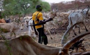Treat Herdsmen like Boko Haram
