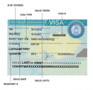 Canadian Visa Lottery Application Form 2018/2019 Is Scam ... on canada home, canada work permit, spain visa form, cyprus visa form, canada tourism, canada employment, canada citizenship form, canada registration form, adventure in letter form, canada visa medical form, green card application form, parent contact information form, usa visa form, canada immigration form, united states embassy application form, canada visitor record, canada tax form, laos visa on arrival form,