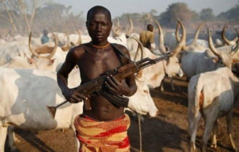 Herdsmen With AK47