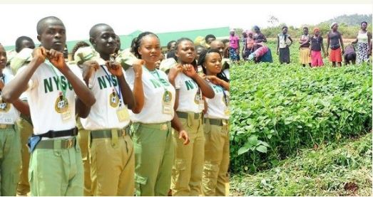 NYSC Corpers NYSC Farm Agric NYSC Corps Members Posted To Farms