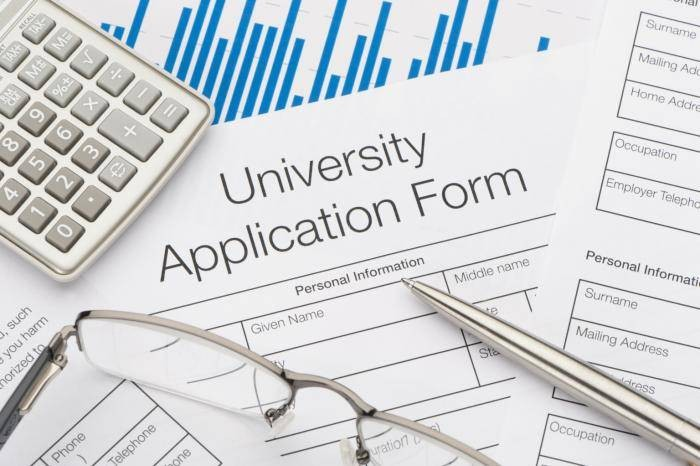 University Admission Application Registration Form