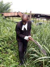 osun-lawyers-in-suit-cutting-grasses-1