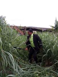 osun-lawyers-in-suit-cutting-grasses-4