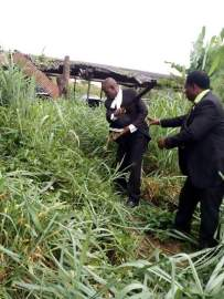 osun-lawyers-in-suit-cutting-grasses