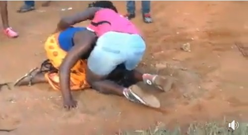Lady Stripped Unclad While Fighting With Rival In Public (See Photos)